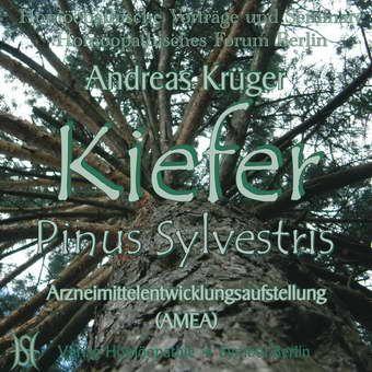 Kiefer - Pinus Sylvestris. Arzneimittelentwicklungsaufstellung (AMEA)