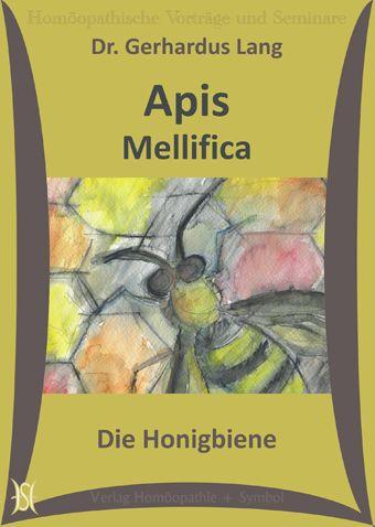 Apis Mellifica - Die Honigbiene. (Arzneimittelbild)